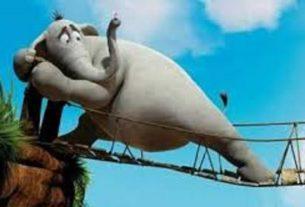 گوش فیل جادویی+قصه شب