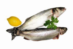 تغذیه کودک + ماهی