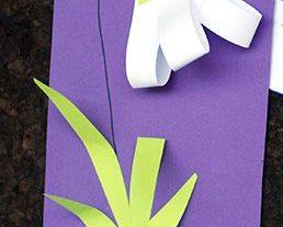 گل زیبا+ کاردستی بهاره