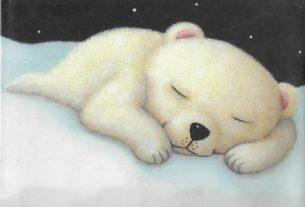خواب خرسی